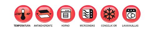 informacion moldes silicona
