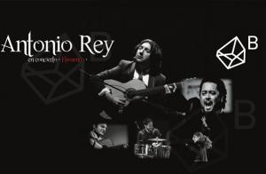 Concierto flamenco de Antonio Rey