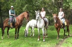 Ruta a caballo por la Sierra de Aracena