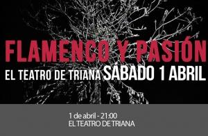 """Espectáculo """"Flamenco y Pasión"""""""
