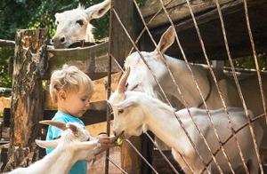 Domingo en familia en la Granja Escuela Cuna