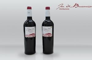 Pack de 2 botellas Ribera del Duero